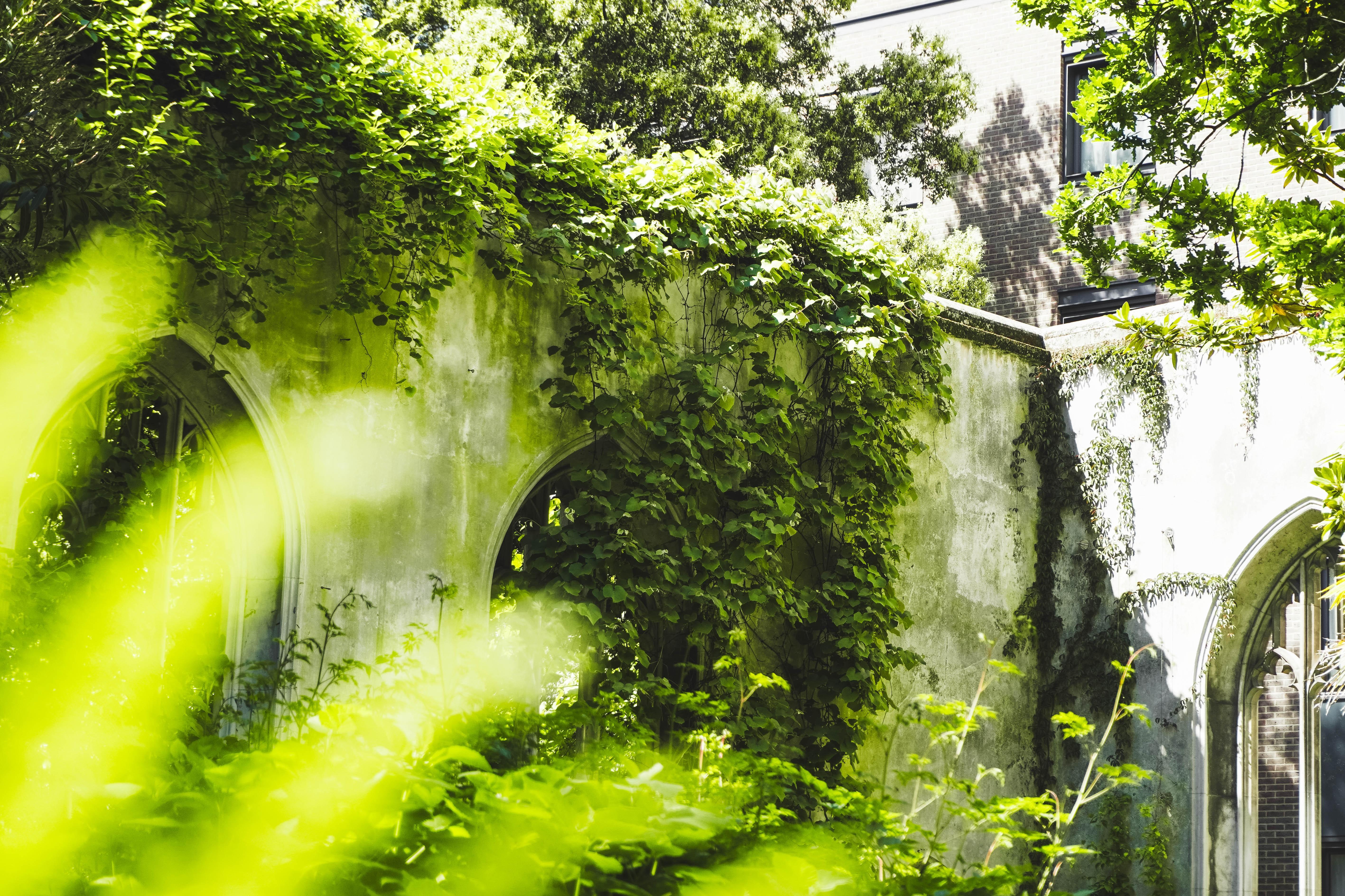 St Dunstan Gardens in London